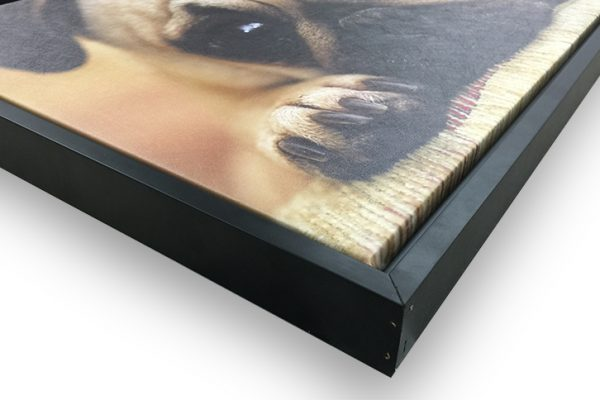 framed-canvas-corner