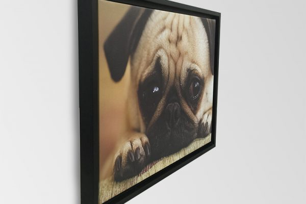 framed-canvas-hung-600x400